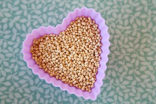Lecitina de soja combate el colesterol